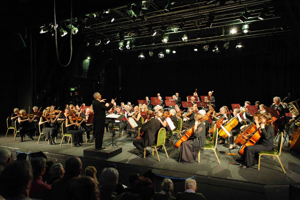 SSO_1-3-15_026 Full Orch and audience.jpg
